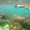 Learn & snorkel