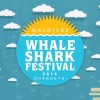 WS festival