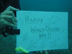 Happy World Oceans Day underwater