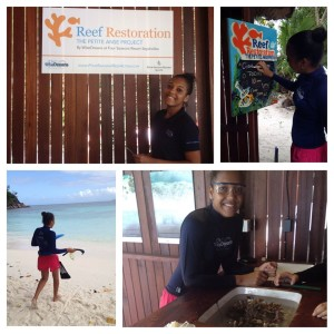 Annie collage, Seychelles, August 2015 © JE WiseOceans