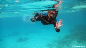 Jo snorkeling, FSRM, Oct 2015 © WiseOceans