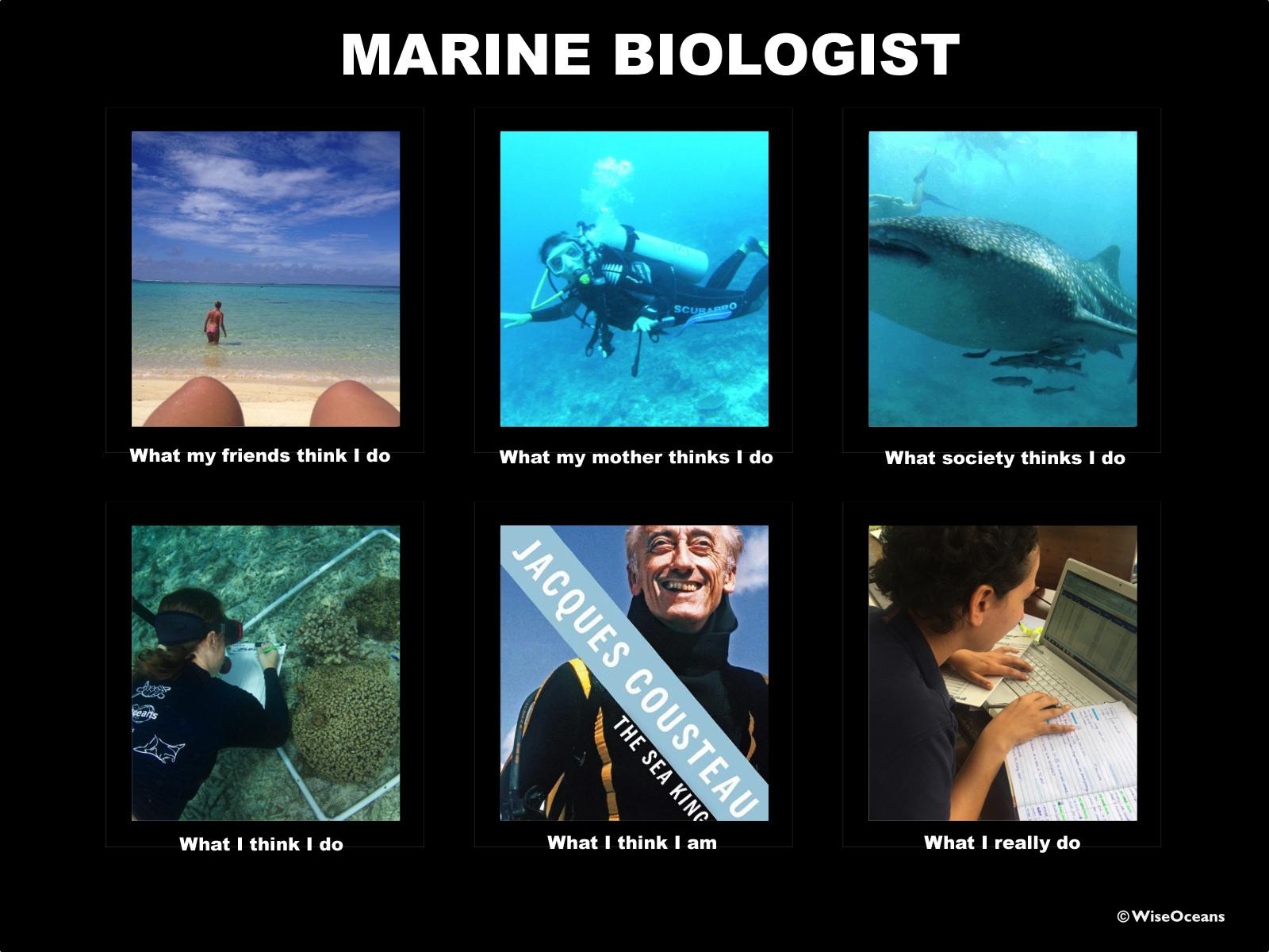 Marine Educator Meme © WiseOceans 2014