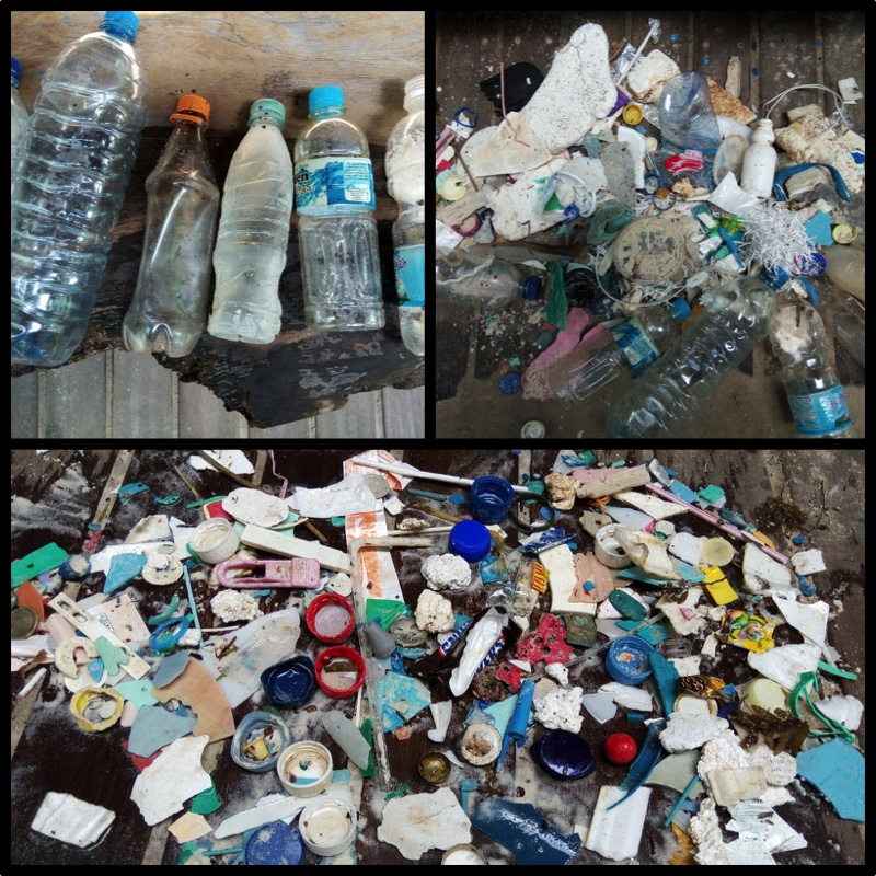 Motivation for our #plasticchallenge. This is the result of one quick beach clean!