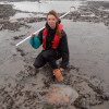 Surveying blue mussel in Morecambe Bay, Cumbria with North West IFCA