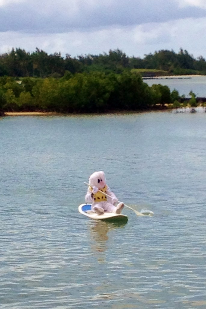 The Easter bunny delivers in the mangroves too!