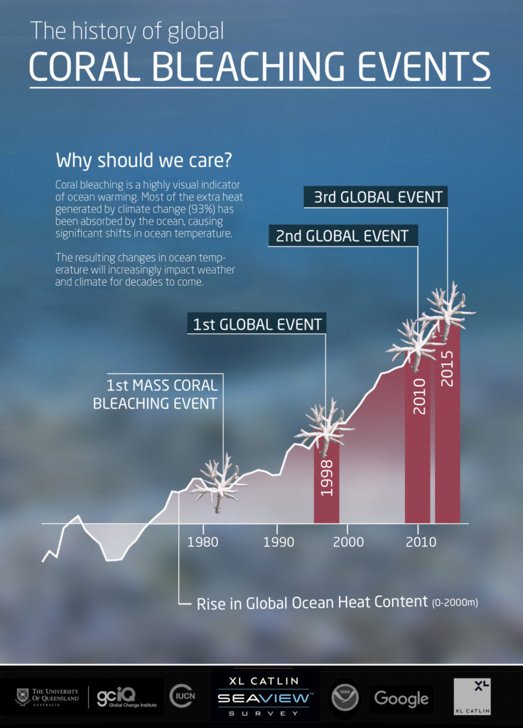 Global Coral bleaching events, by Catlin Seaview Survey