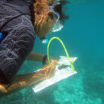 anthea-on-a-coralwatch-seychelles-oct-2016-wiseoceans