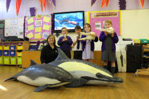 orca-at-godshill-primary-1