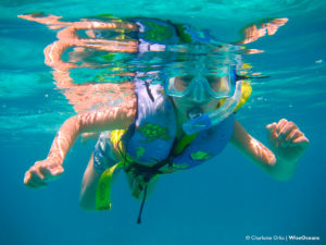 start-snorkeling-young-wiseoceans