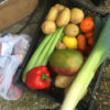 7) Veg from the veg shed