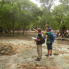 Leading a mangrove survey with volunteers on Wasini Island, Kenya