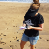 Kate Chadwick Beach clean